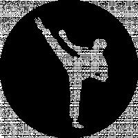 Beginners Taekwondo 8yrs +