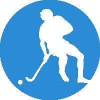 Little Sticks Hockey